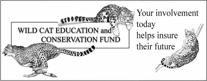 Wild Cat Education and Conservation Fund logo