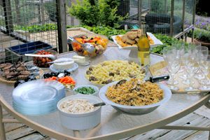 photo of buffet luncheon at Wild Cat Education and Conservation compound